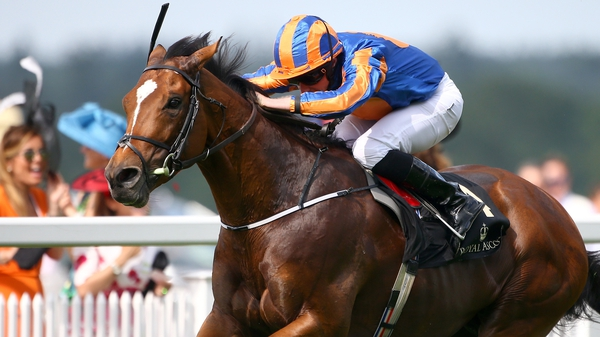 Aidan O'Brien's stable star had been expected to be withdrawn if ground conditions worsened