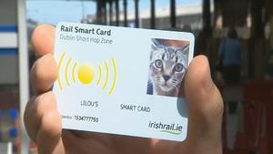 Cat Smart Card, 2010