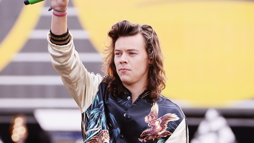 Harry Styles is set to give acting a try during his break from One Direction
