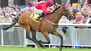 Gordon Lords it over rivals in Minstrel Stakes