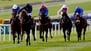 Air Force Blue to face 12 rivals in 2000 Guineas
