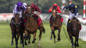 Simple Verse was disqualified and placed second in last season's St Leger but took the race on appeal