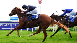 Coolmore can be backed at 6-1 for the Nell Gwyn Stakes
