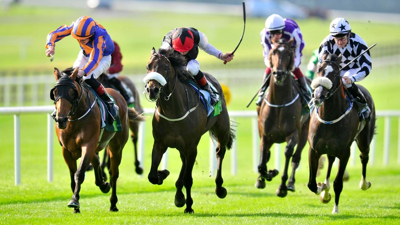 Image result for port douglas beresford stakes