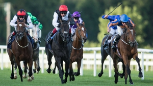 Found was third behind Golden Horn in last month's Irish Champion Stakes before finishing ninth in the Prix de l'Arc de Triomphe