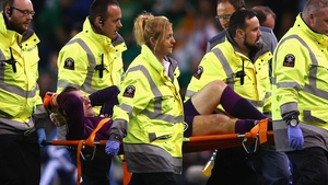Shay Given was stretchered off the field during Ireland's 1-0 qualifier victory over Germany