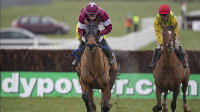 Rogue Angel aiming for National double