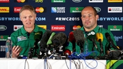 Shane Long's touch and his finish were exceptional, said Joe Schmidt (l)