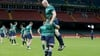 Ireland brace for Pumas clash without pack leaders