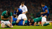 Ireland produced a performance for the ages against France, but at what cost?