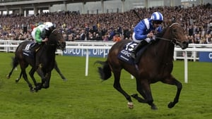 Muhaarar comes home first
