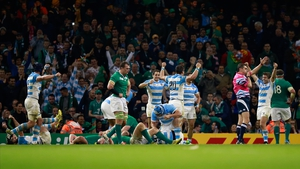 Ireland never recovered fully from two early Argentina tries