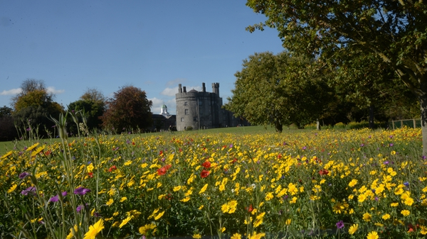Kilkenny Castle. Photo: Kevin Lonergan