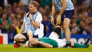 Paul O'Connell has been ruled out for up to eight months