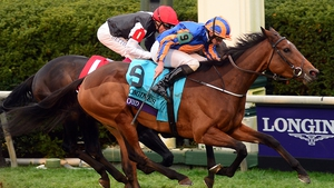 Found edged out Golden Horn in the Breeders' Cup Turf at Keenland last season
