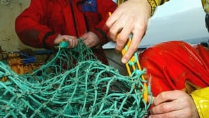 According to environmentalists overfishing is harmful to the marine environment