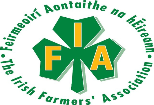 IFA Executive Council Meeting Preview