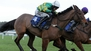 Punchestown wrap: On The Fringe doubles up again