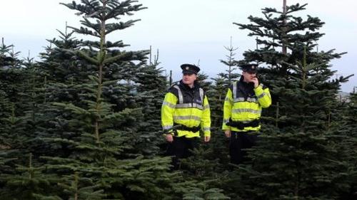 Garda James O'Donoghue and Garda Daragh McAvoy patrol a Christmas tree farm in Wicklow