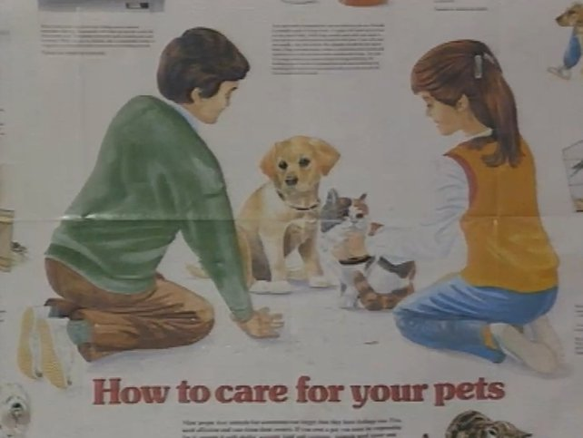 Education Campaign on Caring for Pets