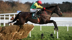 Supasundae won the Punchestown Champion Hurdle