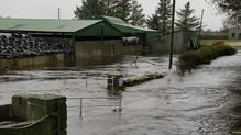 Flood waters rise on Micheál Cahill's farm in Kiltartan, south Galway