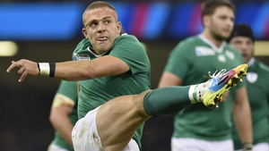 Ian Madigan has 30 Ireland caps