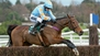 Mullins may send star chaser to France