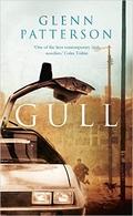 """Gull"" by Glenn Patterson"