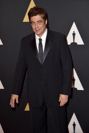 Best Supporting Actor: Benicio del Toro, Sicario