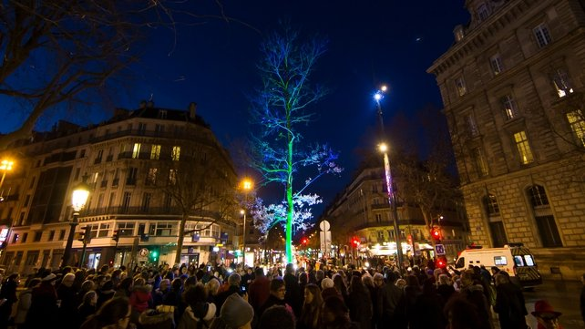 Parisians gather in front of the newly illuminated memorial oak tree on Place de la Republique