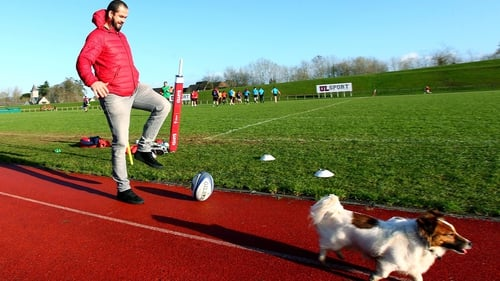 Andy Farrell messing around with a dog at Munster training on Tuesday morning