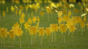 CEO Averil Power said the Irish Cancer Society would normally raise €4m on an average Daffodil day