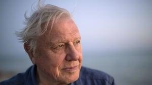 David Attenborough: witness to decline