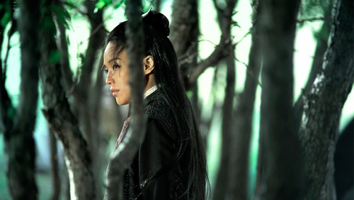 Nie Yinniang (Qi Shu), the reluctant Assassin in Hou Hsiao-Hsien's marvellous film of that name.