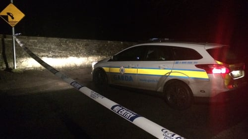Gardaí are investigating the discovery in Ardclough, Co Kildare