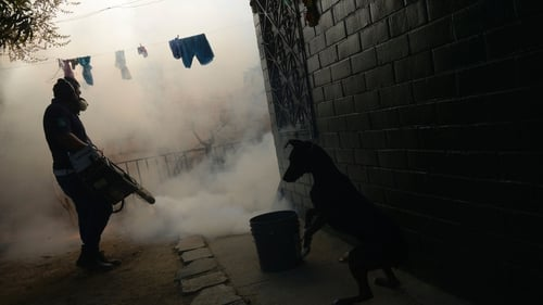 A Health Ministry employee fumigates a home against the Aedes aegypti mosquito to prevent the spread of the Zika virus in El Salvador
