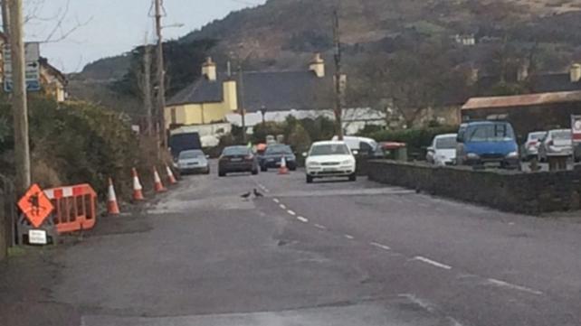 The collision happened on the Kilcrohane Road in Durrus, Co Cork