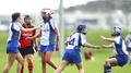 Milford and Killimor to contest camogie club final