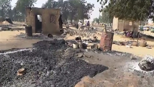 Boko Haram Islamists armed with guns and explosives attacked a village in north-eastern Nigeria