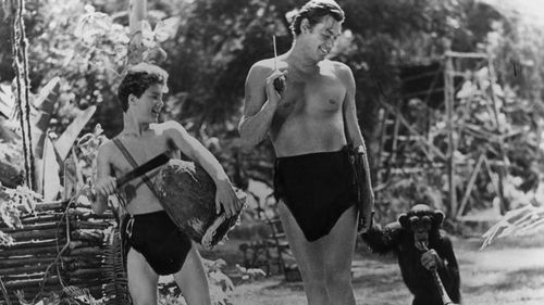 Eddie Jones wants Hartley to be more like Tarzan (c)