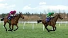 Carlingford Lough wins another Irish Gold Cup