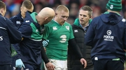 Keith Earls suffered a suspected concussion against Wales