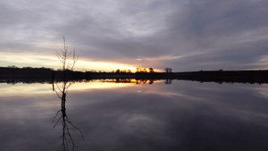 Early morning reflection over Pallas Lake, Blueball, Offaly (Pic: Seanie Morris)