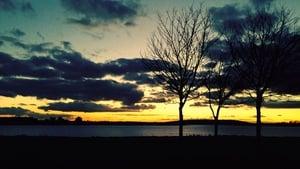 Skerries at sunset (Pic: Bernard Gillespie)