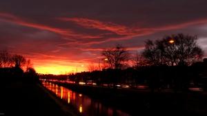 Morning sunburst along Dublin's Grand Canal (Pic: Alan Morton)