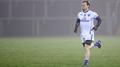 Seanie Johnston inspires Cavan comeback
