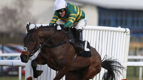 Minella Rocco is fancied for the for the National Hunt Chase