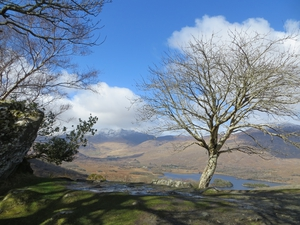Ladies View in Killarney National Park, Co Kerry (Pic: Neil Condron)
