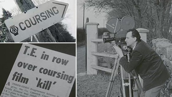 Hare Coursing (1966)